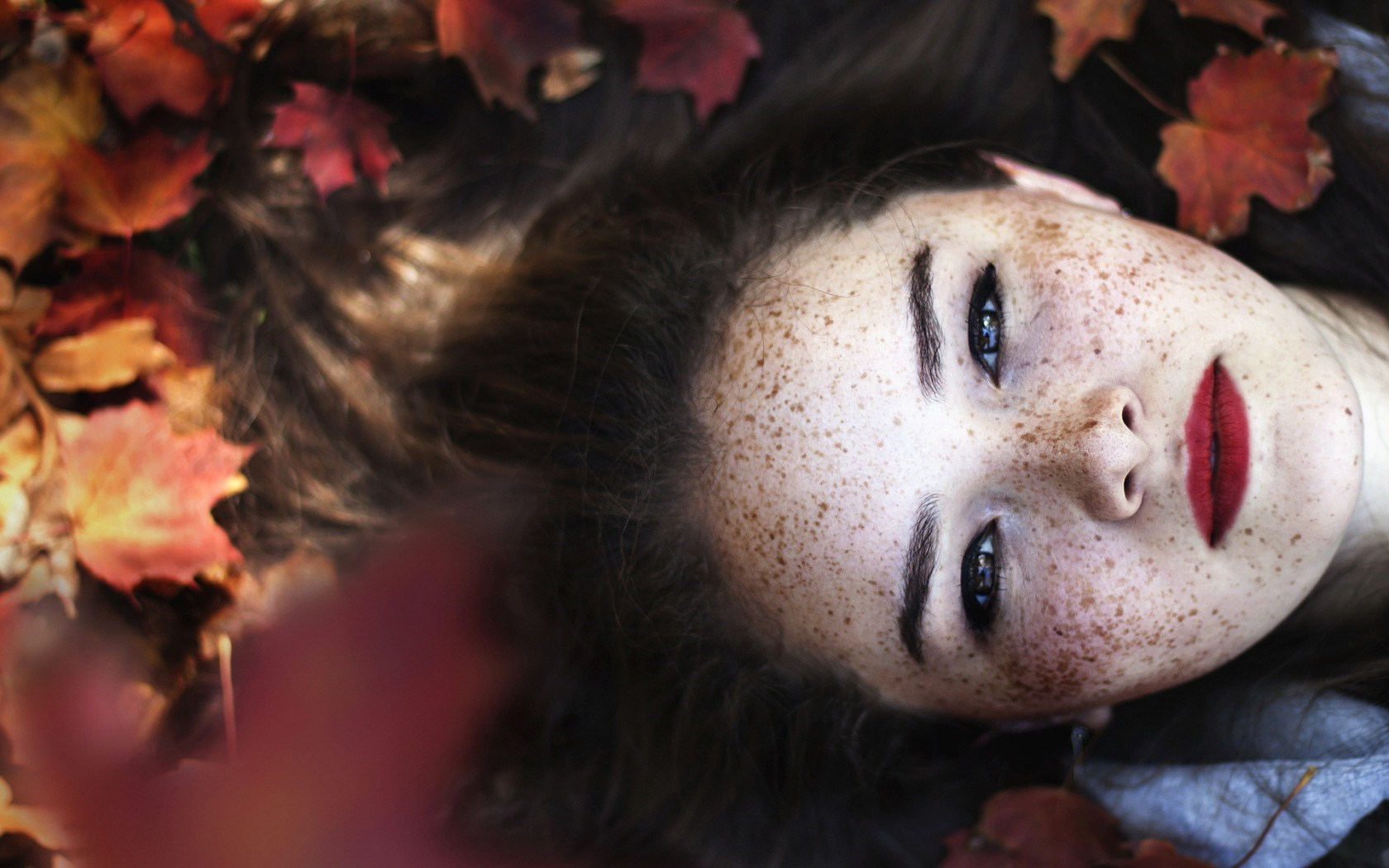 6983476-girl-freckles-leaves-autumn